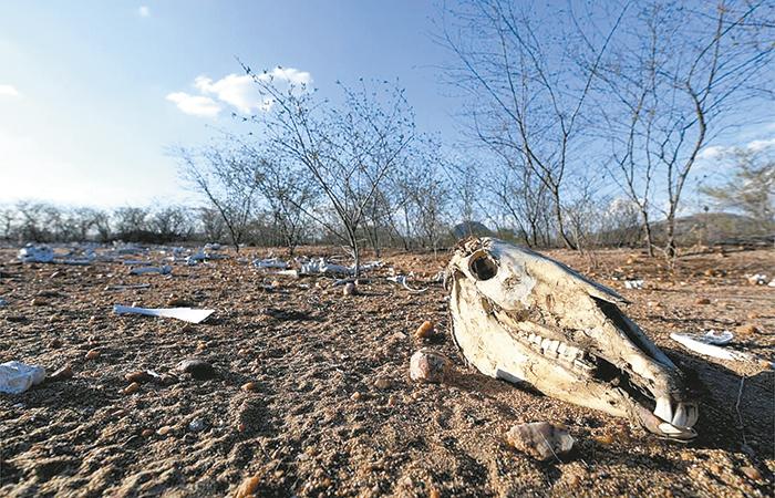 Reservas de agua subterráneas del mundo, en riesgo por cambio climático