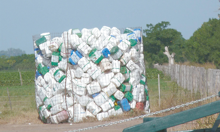 Destaca Sonora por manejo de envases vacíos de agroquímicos