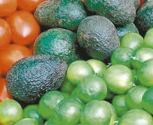 Aguacate, cebolla y limón, con mayor variación a inicio de año