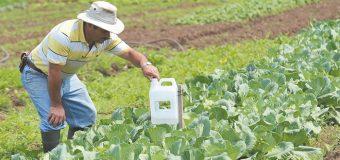 México y Brasil fortalecerán la cooperación agrícola