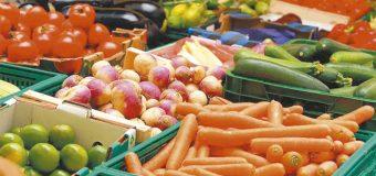 Renegociación de Norteamérica no afectó agroexportaciones de Guanajuato