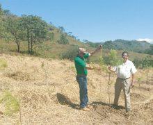Rescatarán suelos agrícolas con nuevas tecnologías