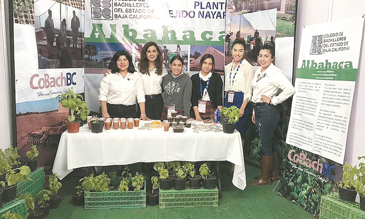 Estudiantes del COBACHBC Nayarit en AGROBAJA 2019