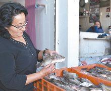 5 tips para escoger  pescados frescos