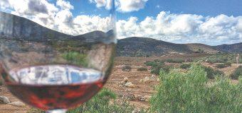Destaca BC turismo de romance y Ruta del Vino en Tianguis Turístico