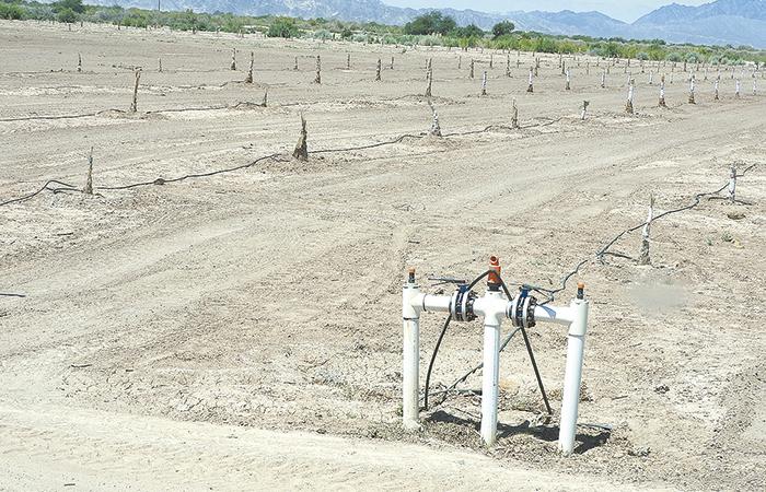 Rescatan volúmenes  de agua en Módulo 11