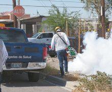Acciones de prevención de dengue, zika y chikungunya