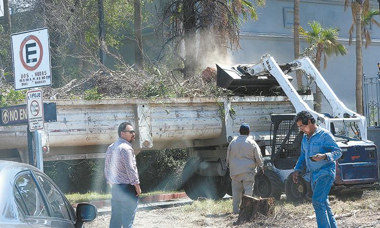 Ciudadanos denuncian ecocidio por personal del 22 Ayuntamiento