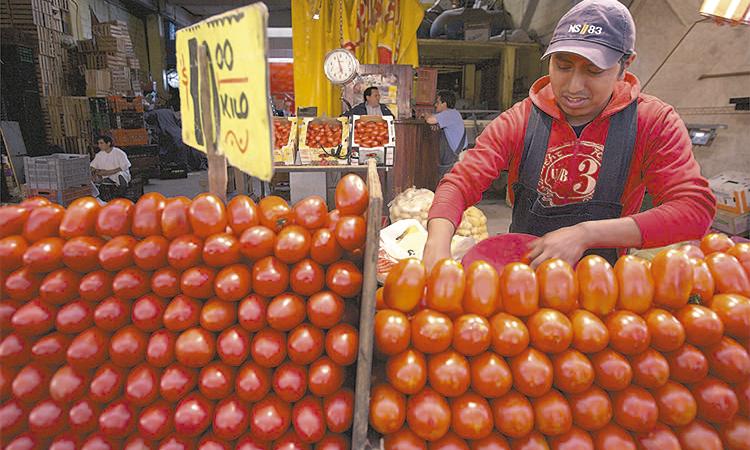 Jitomate bajará de precio en México
