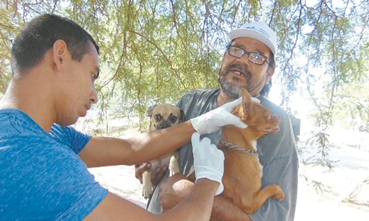 Vacunación antirrábica en el mes de junio