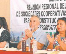 Rebelión de ganaderos sinaloenses contra la CNOG