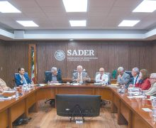 Sader y Comisión de Agricultura del  Senado analizan las acciones en el sector