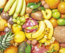 Futuro de alimentos requiere producirlos sin destruir el planeta: PNUMA