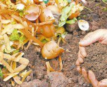 Costoso e ineficiente apostar por fertilizantes químicos