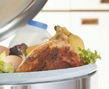España desperdicia más de mil 300 millones de kilos de alimentos al año
