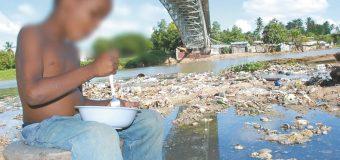 FAO denuncia que ya hay 39 millones de personas con hambre en América Latina