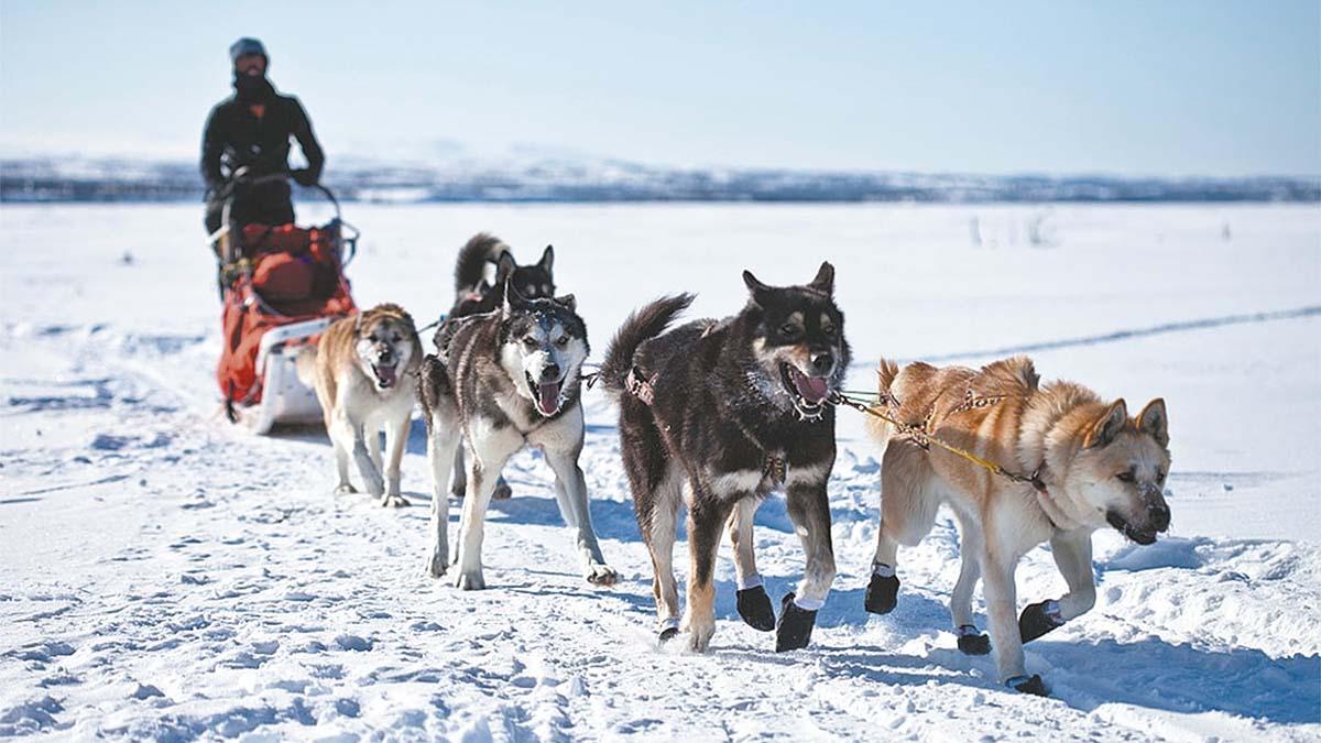 Indígenas del Ártico temen por su supervivencia