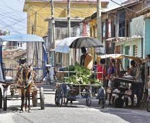 """Cuba provee alimentos a sus hoteles con """"tracción animal"""" en plena crisis"""