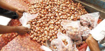 Aunque los precios se disparen, Bangladesh  no sabe vivir sin cebolla