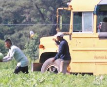 Aprueban proyecto que legalizaría a los trabajadores agrícolas indocumentados