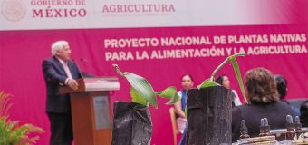 México clave en revaloración e  impulso productivo de vainilla