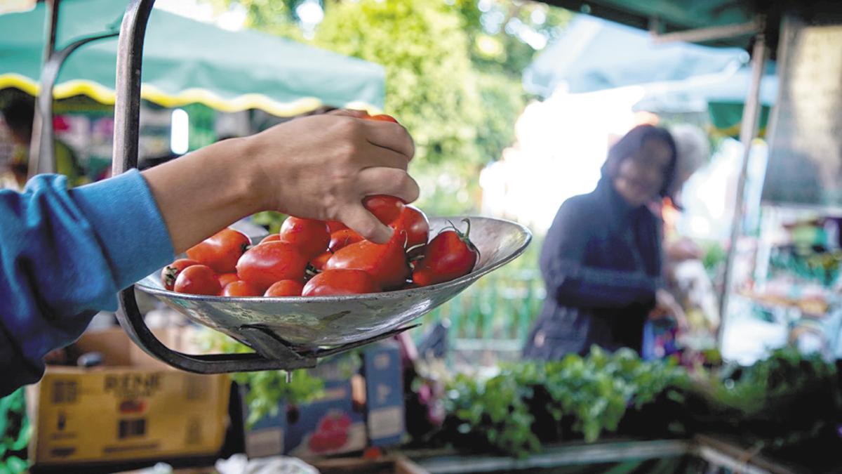 Soberanía alimentaria mediante un sistema justo, saludable y sustentable