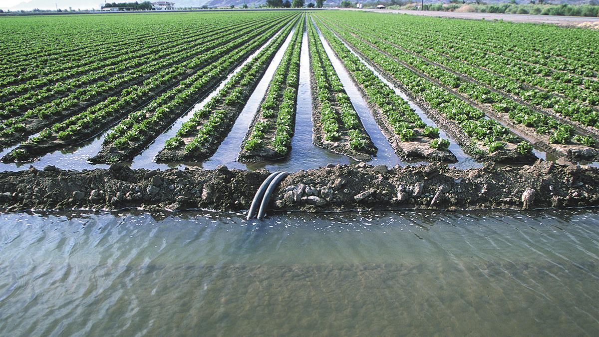 No se privatiza agua agrícola: Dip. Juan Melendres Espinoza