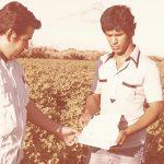 Sader, a toro pasado con declaratoria sobre plagas del algodonero en Mexicali